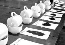 Tea-Tasting-Cups