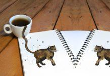Kahve Sanatının Gelebileceği En Güzel Noktayı Gösteren 7 Kedili Kahve